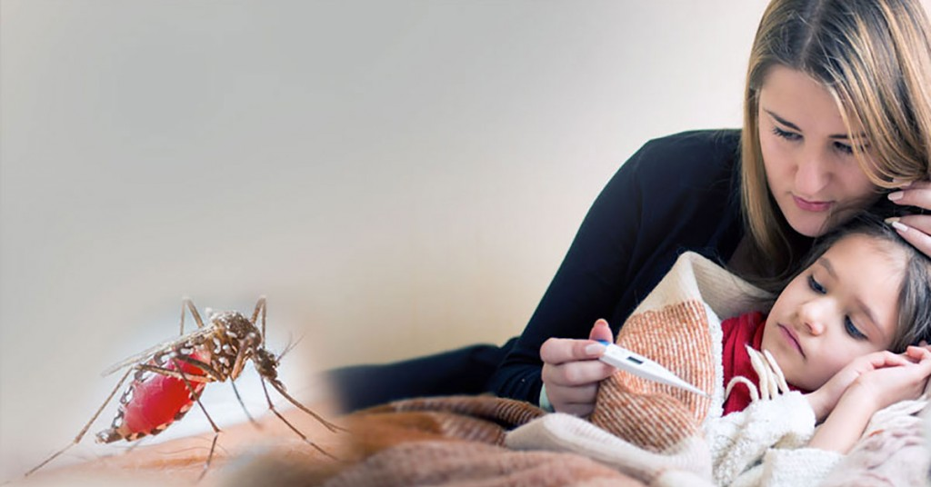 mosquito-share